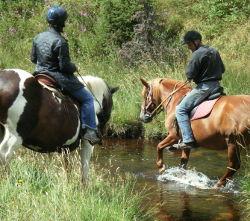 Promenades à cheval